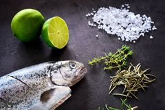 Fresh rainbow trout with lime and seasoning. Fish at dark background. Detail of preparation. Fresh rainbow trout with lime and seasoning. Fish at dark background Royalty Free Stock Images