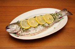 Fresh rainbow trout with spices Royalty Free Stock Photo