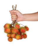 Fresh rambutan bales in hand on white background. Fresh rambutan bales in hand isolated on white background Stock Photo