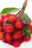 Fresh rambutan. Close up fresh rambutan fruit Stock Image