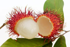 Fresh rambutan fruit Royalty Free Stock Image