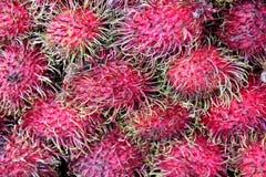Fresh rambutan fruit. From Thailand Stock Photography