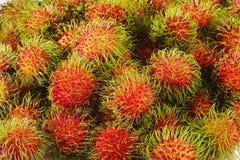 Fresh rambutan fruit. Rambutan background Royalty Free Stock Photography
