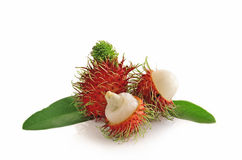 Fresh rambutan fruit isolate on white background. Fresh rambutan on white background Royalty Free Stock Photos