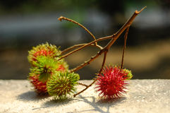 Fresh Rambutan Fruit (Nephelium lappaceum). MALACCA, MALAYSIA – JULY 2014: Fresh asian red rambutan fruit (Nephelium lappaceum) from Malaysia and its ready to Stock Photo