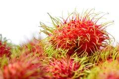 Fresh rambutan fruit. Fresh rambutan sweet delicious fruit Royalty Free Stock Photos