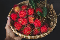 Fresh Rambutan Fruits. From Vietnam Stock Image