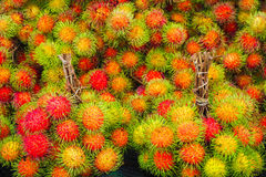 Fresh rambutan from garden for sale in market. Fruit Stock Images
