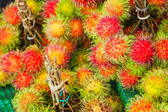 Fresh rambutan from garden for sale in market. Fruit Royalty Free Stock Photography