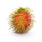 Fresh rambutan Stock Image