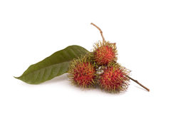 Fresh rambutan isolate on white background.  Stock Image