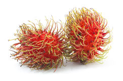 Fresh rambutan isolated. On white background Royalty Free Stock Image