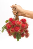 Fresh rambutan with leaf on the basket Stock Images