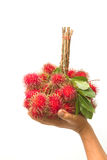 Fresh rambutan with leaf on the basket Stock Image