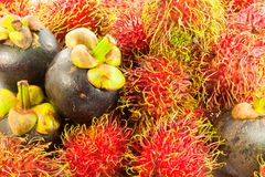 A fresh rambutan and mangosteen Royalty Free Stock Photography