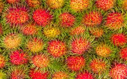 Fresh rambutan sweet delicious, Natural texture background. Fresh rambutan sweet delicious, healthy rambutan tropical fruit food Royalty Free Stock Photo