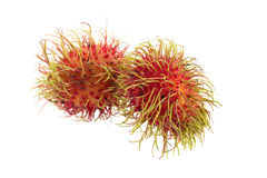 Fresh rambutan tropical fruit isolated on a white background.  Royalty Free Stock Photo