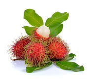 Fresh rambutan on white background. Fresh rambutan on a white background Stock Photos