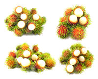 Fresh rambutan on white background. Collection fresh rambutan on white background Royalty Free Stock Image