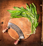Fresh ramson on circle cutting board with vintage herbs chopper , top view. Copy space Stock Images
