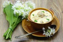 Fresh ramson with garlic soup with meat balls and mushrooms on t. Fresh ramson with garlic soup with meat balls and Agaricus mushrooms on table. bunch of fresh Royalty Free Stock Photo