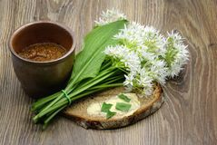 Fresh ramson wild garlic leaves and butter bread on table. Pot with mustard spice aside Royalty Free Stock Photography