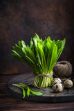 Fresh ramson wild garlic  and quail eggs. On  rustic  background, selective focus Stock Photography