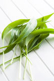 Fresh ramsons leaves. Wild garlic leaves. Healthy vegetable Stock Photo