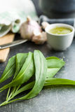 Fresh ramsons leaves. Wild garlic leaves  on old kitchen table Stock Photo