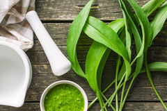 Fresh ramsons leaves. Wild garlic leaves and tasty pesto. Healthy vegetable Stock Photography
