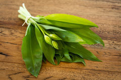 Fresh ramsons on a wooden plate. Fresh ramsons on a rustic wooden plate Royalty Free Stock Photography