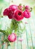 Fresh ranunculus. Bouquet of pink ranunculus in a vase Stock Photos