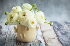 Fresh ranunculus. Bouquet of white ranunculus in vase Royalty Free Stock Photography