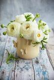 Fresh ranunculus. Bouquet of white ranunculus in vase Stock Photography
