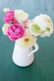 Fresh ranunculus  in vintage vase. Fresh colorful ranunculus in white vintage vase on green Royalty Free Stock Photos