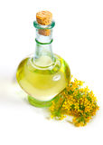 Fresh rapeseed oil in a bottle. On a white background Royalty Free Stock Images