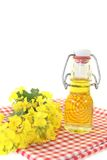 Fresh Rapeseed oil Stock Image