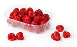 Fresh rapsberry. From forest in plastic container Stock Photos