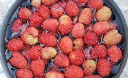 Fresh raspberies in a saucepan Royalty Free Stock Photo