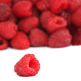 Fresh raspberries. Isolated on white background Stock Images