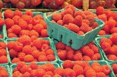 Fresh raspberries Stock Image