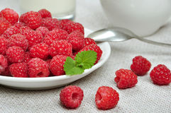Fresh raspberries. On white plate with green leaves close up Stock Photos