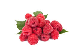 Fresh raspberries. Isolated on white background Stock Photography