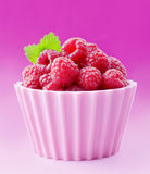 Fresh raspberries Stock Photography
