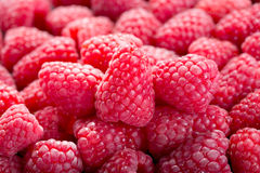 Fresh raspberries as background Royalty Free Stock Photo
