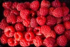 Fresh raspberries as background. Fresh ripe raspberries as background Stock Photos