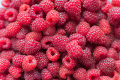 Fresh raspberries background close up Royalty Free Stock Photos