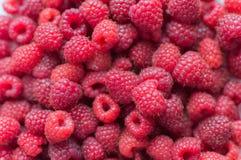 Fresh raspberries background close up.  Royalty Free Stock Photos