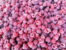 Fresh raspberries background closeup photo.  Royalty Free Stock Images