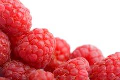 Fresh raspberries background isolated. On white Royalty Free Stock Photo
